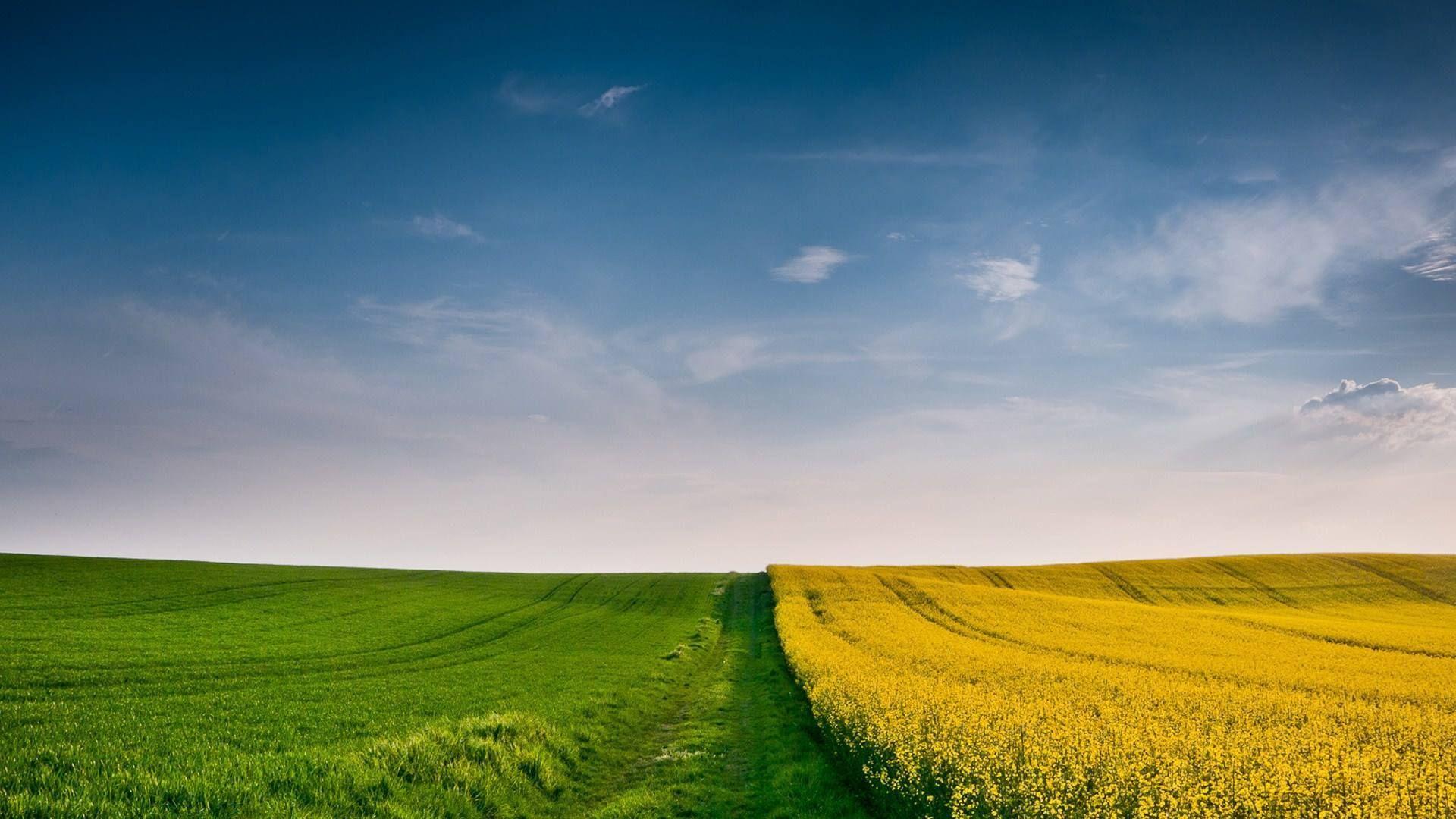 唯美风景壁纸,聆听大自然的美