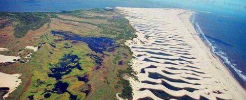 世界上最神奇的沙漠 本该黄沙漫天寸草不生 却遍地湖泊鱼虾成群