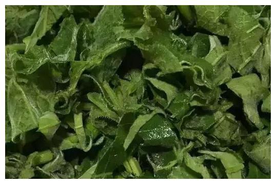 这种不起眼的绿色蔬菜,好吃又营养,清肺还养胃