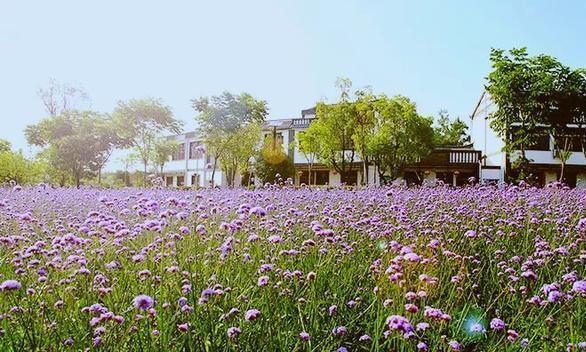 武汉周边小众度假,住荆楚民宿,闻鸟语花香,归园田居