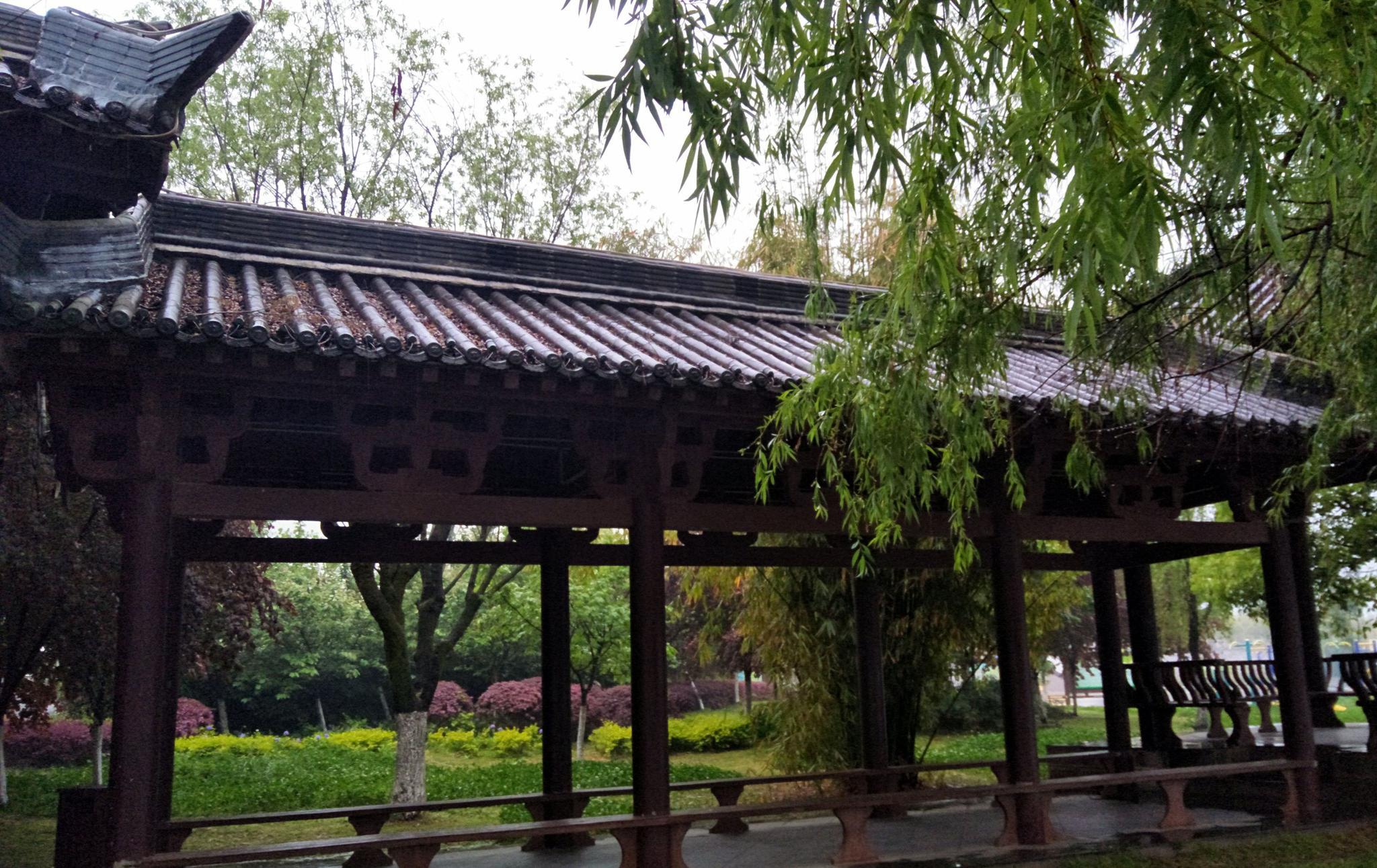 立冬节气还没到,汉中的天气咋就这么冷