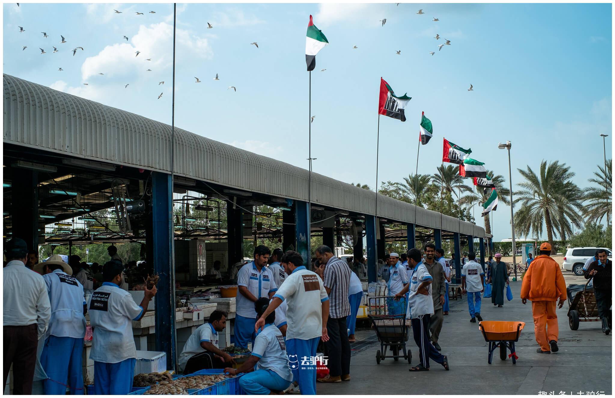 实拍迪拜集市:土豪才能吃得起水果,穷人才吃海鲜