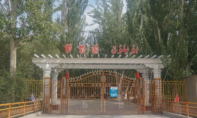 走进新疆吐鲁番葡萄沟,品尝中国最甜的葡萄