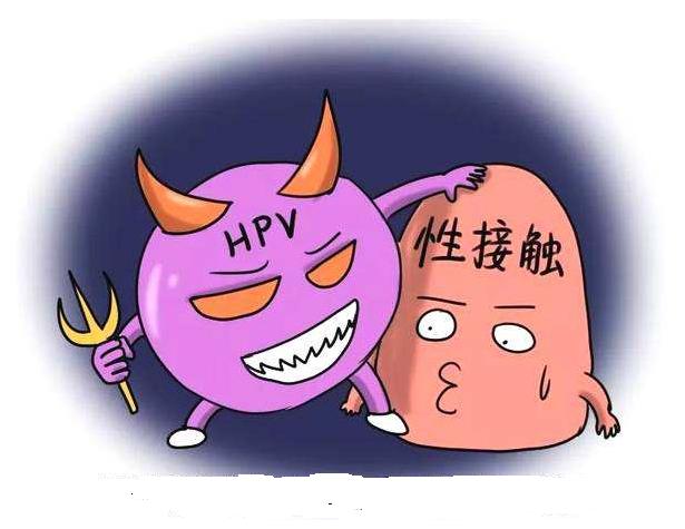 应该怎么正确地做hpv检查,关于hpv的这些知识你需要了解-图片来自猫扑养生网_www.domop.cc