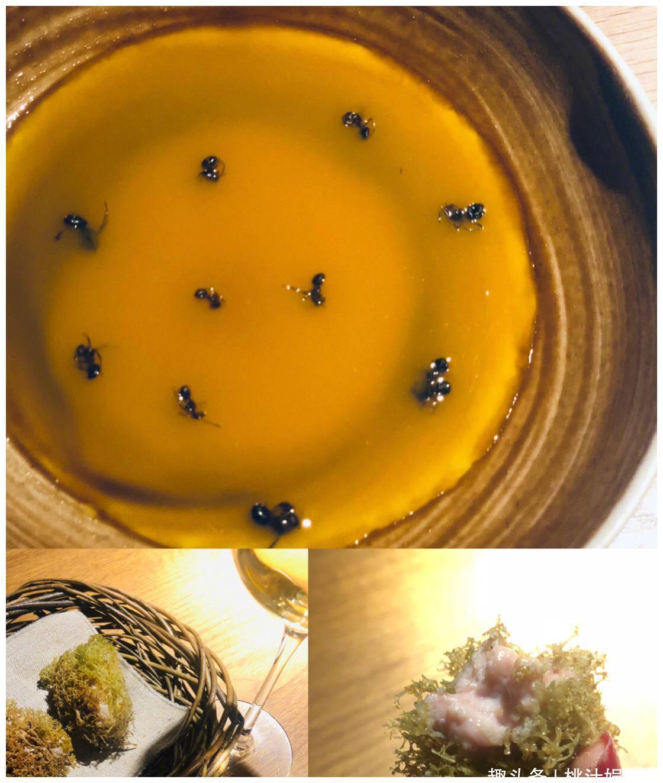 张萌晒米其林美食,要提前十个月预定,鹿心鸭脑蚂蚁让人无法直视