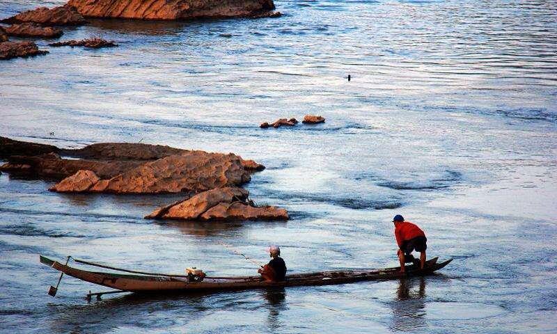 """越南大虾在湄公河泛滥,一只虾巴掌大,""""中国吃货们""""敢下嘴吗?"""