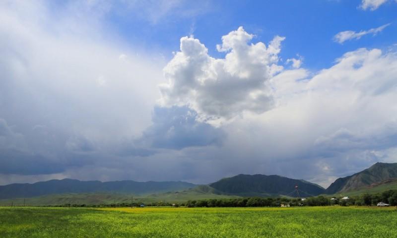 桑科草原的风景