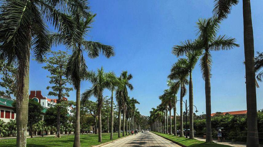 厦门第一站,厦门大学,中国最美的大学之一!