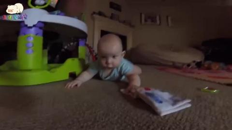 8个月好奇宝宝见到什么都好奇