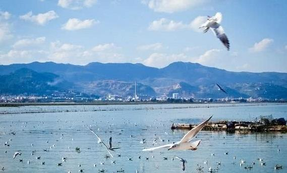 云南最小康的城市,富裕程度碾压玉溪,相当于2个西双版纳州