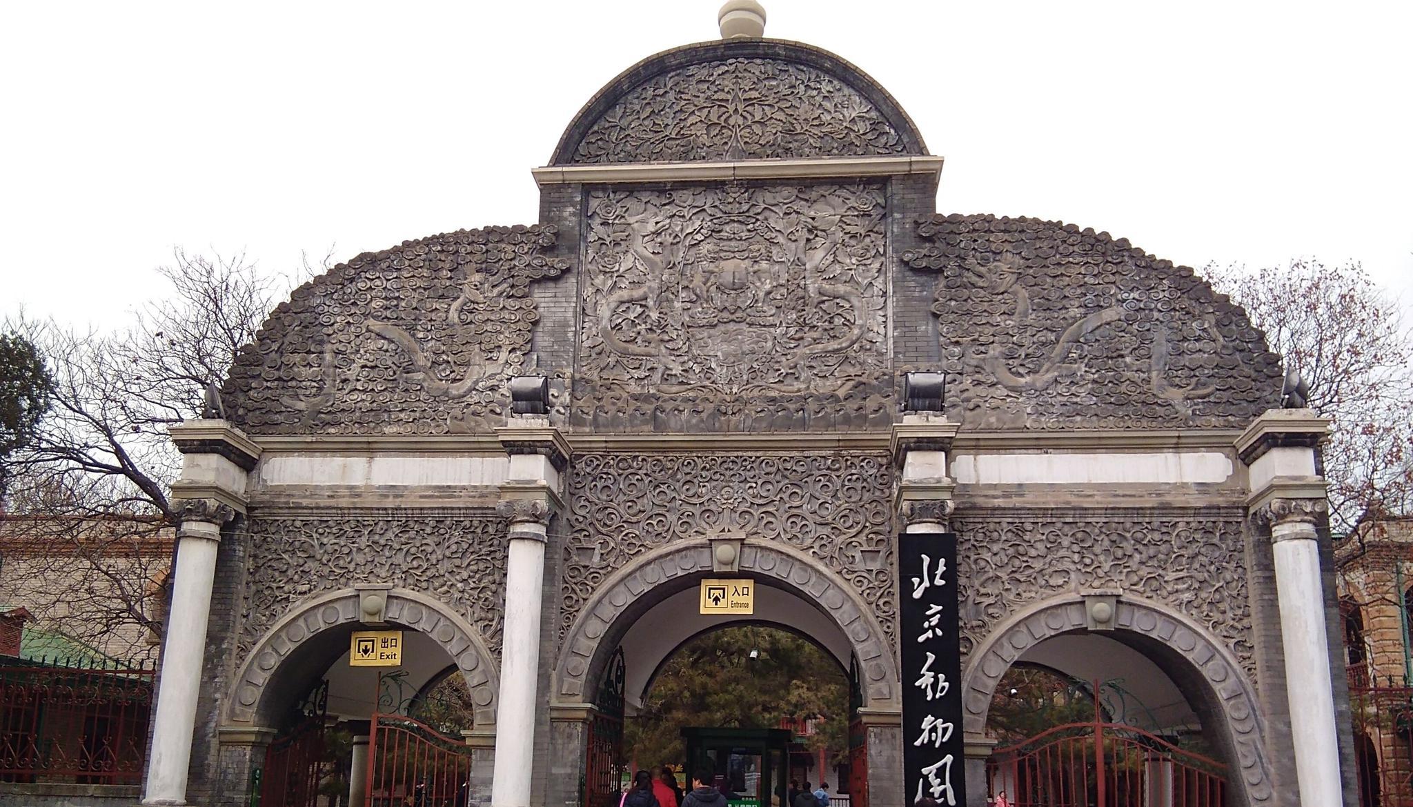 来看一下冬天的北京动物园是什么样子的