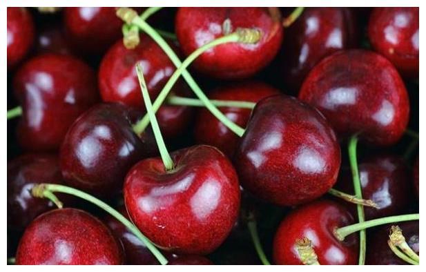 车厘子和樱桃外形相似,为何价格差很多?喜欢水果的朋友要分清楚