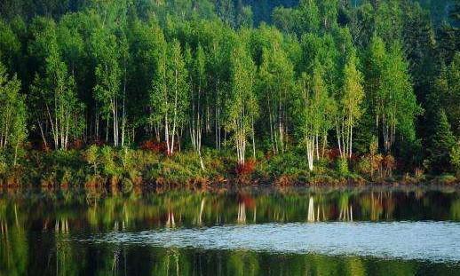 第三批国家森林步道公布,小兴安岭、大别山、武陵山步道入选