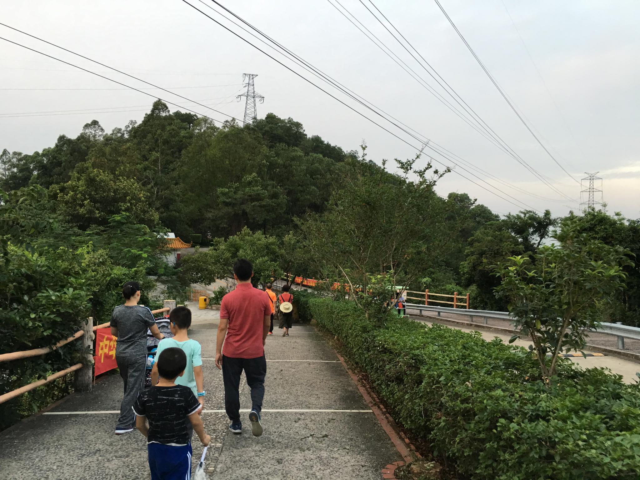 广东观音山国家森林公园里的高压电网群