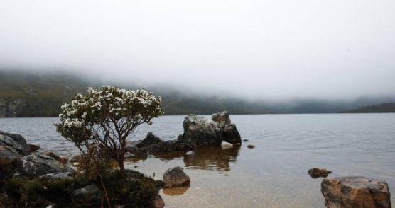 圣佳尔湖国家公园,是塔斯马尼亚最著名的国家公园
