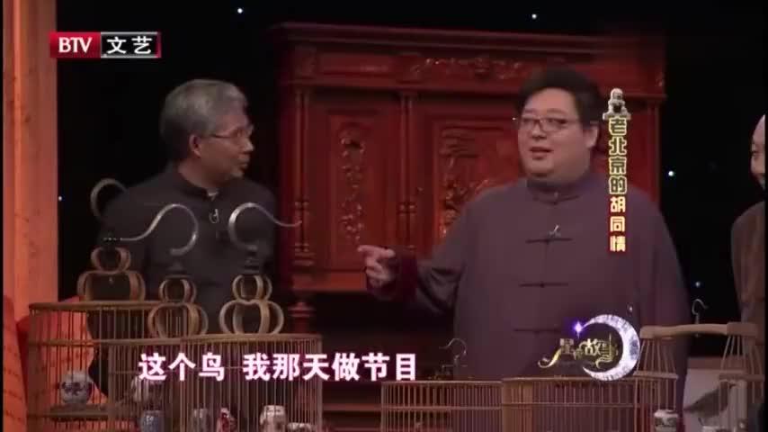 星夜故事北京人特爱玩鸣虫最有发言权的人非王文林世家莫属