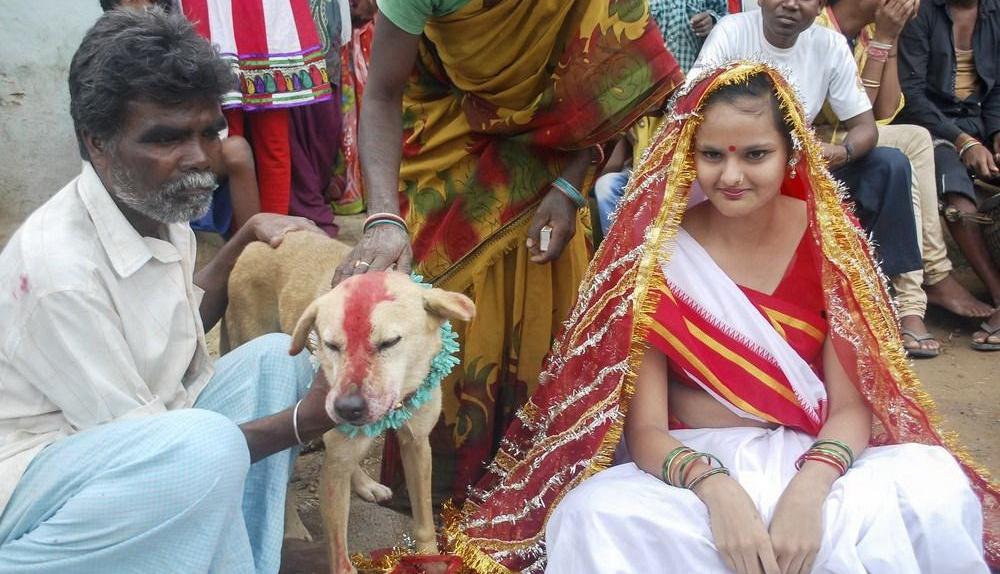 印度的奇葩风俗:为了驱赶厄运,18岁妙龄少女与狗成婚