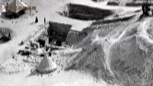 秦始皇祖母的古墓被挖掘,考古学家在其内发现已灭绝的罕见动物