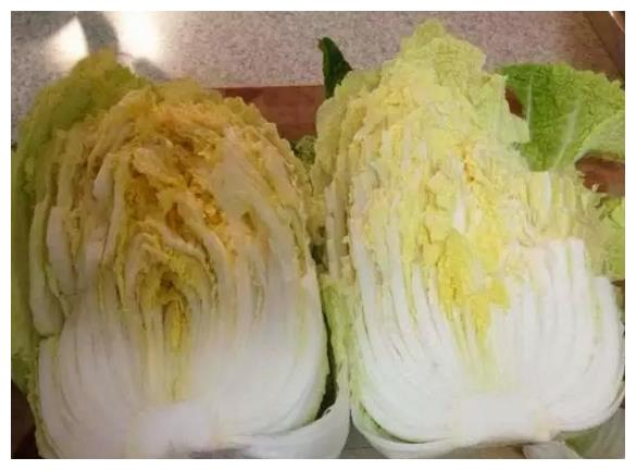 """古代皇宫的一道名菜,""""开水白菜""""营养美味,比较适合夏天!"""