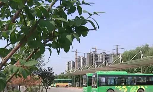 为提升旅游服务质量 邯郸涉县开通4条旅游公交线路