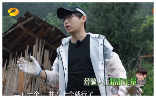 节目组被网友diss怕了,陈飞宇拔萝卜时,特意打上字幕解释!