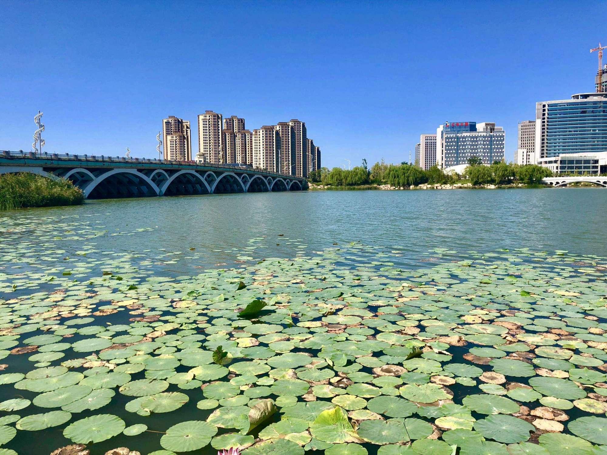 宁夏仅次于银川的城市,生产总值只有银川零头,凉皮却闻名全国