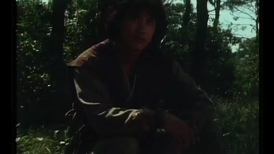 亚视经典武侠片,陈秀雯万梓良主演,剧情一流看得过瘾
