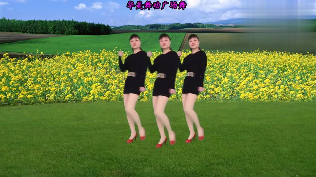 32步广场舞《花开的时候你就来看我》歌曲动感韵律 舞步简单易学