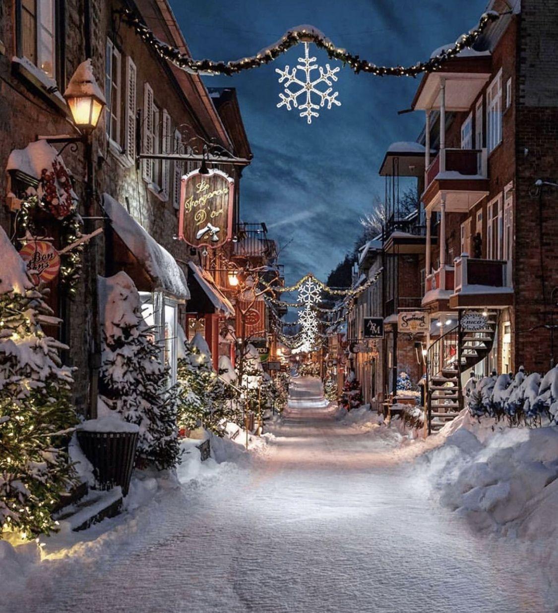 加拿大魁北克美丽雪景