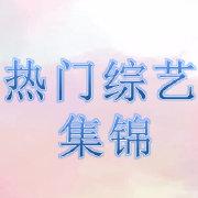 热门综艺集锦