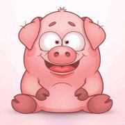 幽默搞笑小猪
