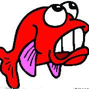 五只鱼闯天涯