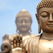 佛教新视野