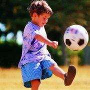 足球小探长