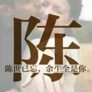 陳少枫旅游杂记