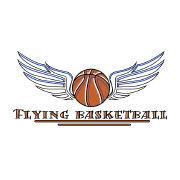 飞翔的篮球号