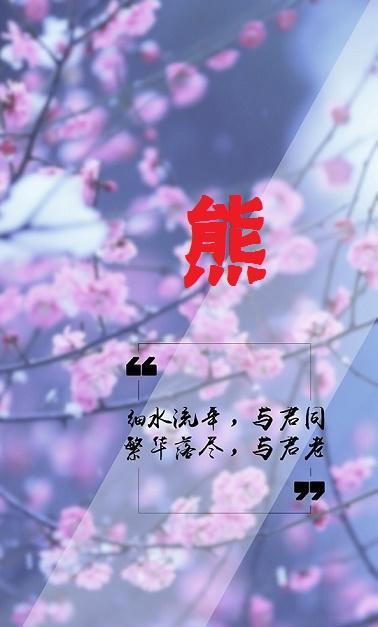 樱花姓氏壁纸,细水流年,与君同;繁华落尽,与君老