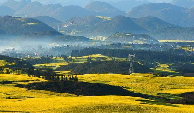 """中国唯一一个有""""油菜花之乡""""之称的城市"""