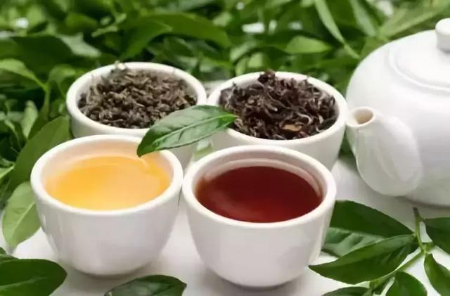 怎样喝茶才养生?(附不同体质选茶指南)