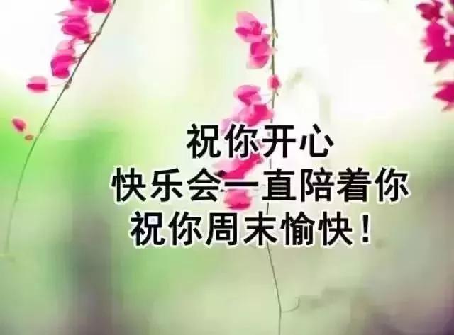 若要快乐,就要像太阳花一样:面朝阳光,努力生长,不卑不亢.
