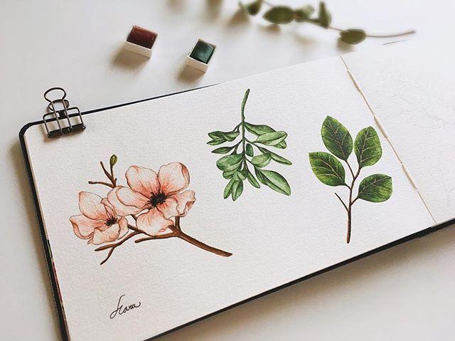 清新文艺的花果绿叶,素材来自韩国插画师hana,仅做分享练习使用.