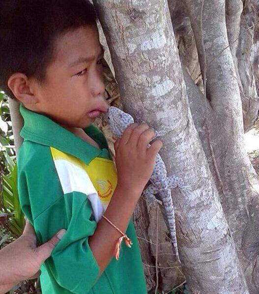 泰国小学生跟大蜥蜴接吻,结果.