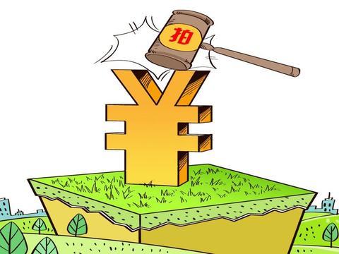 2019年6月26日武汉易仲仓储服务有限公司以底价竞得武汉市1宗工业用地 以23万元/亩成交