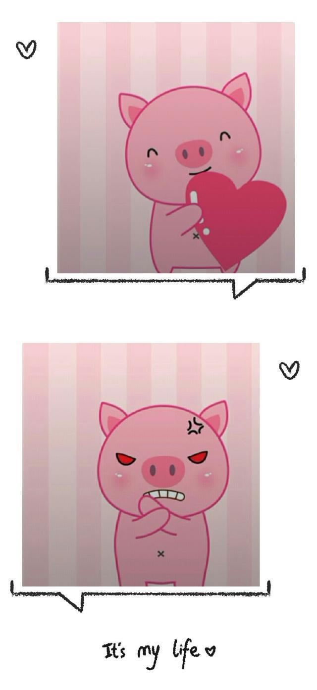 2019抖音可爱小猪图片
