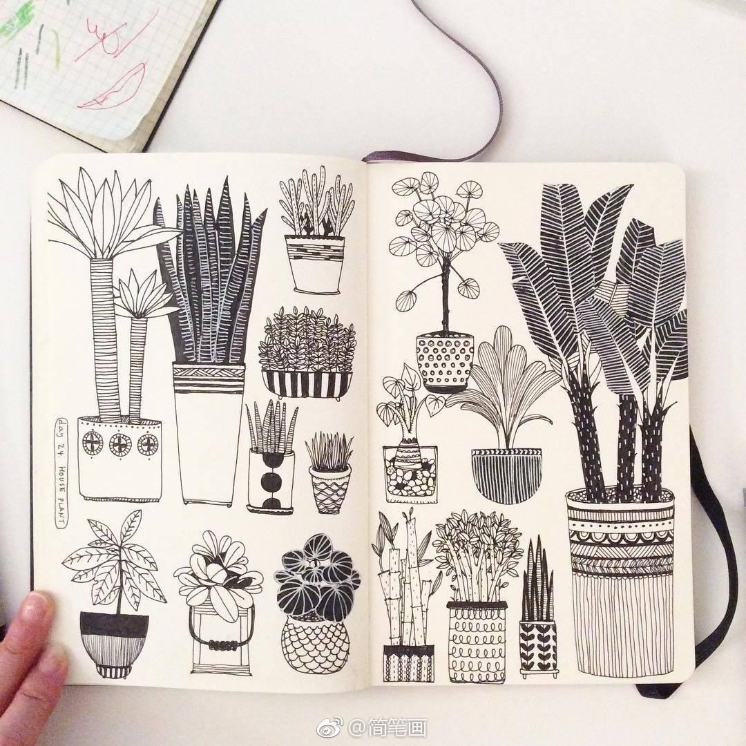 植物,家居,萌宠主题的简笔画手绘素材(by:heegyum kim