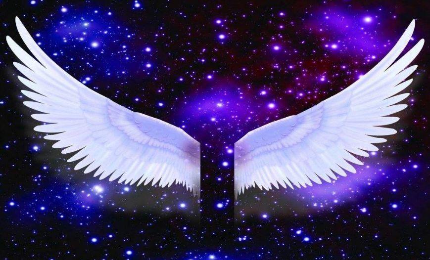 十二星座专属女生羽翼,天秤座冰蓝射手,射手座的让人羡慕!翅膀座a型血马梦幻图片