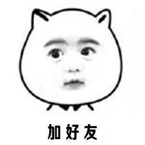 你单身?撩人表情熊猫儿鸡表情包硬邦邦图片