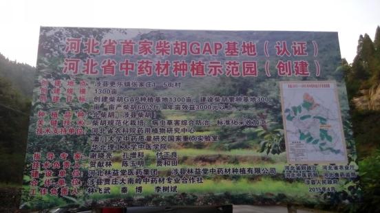 河北边林更加堂成在深圳挂牌上市,伸领不到来新展开