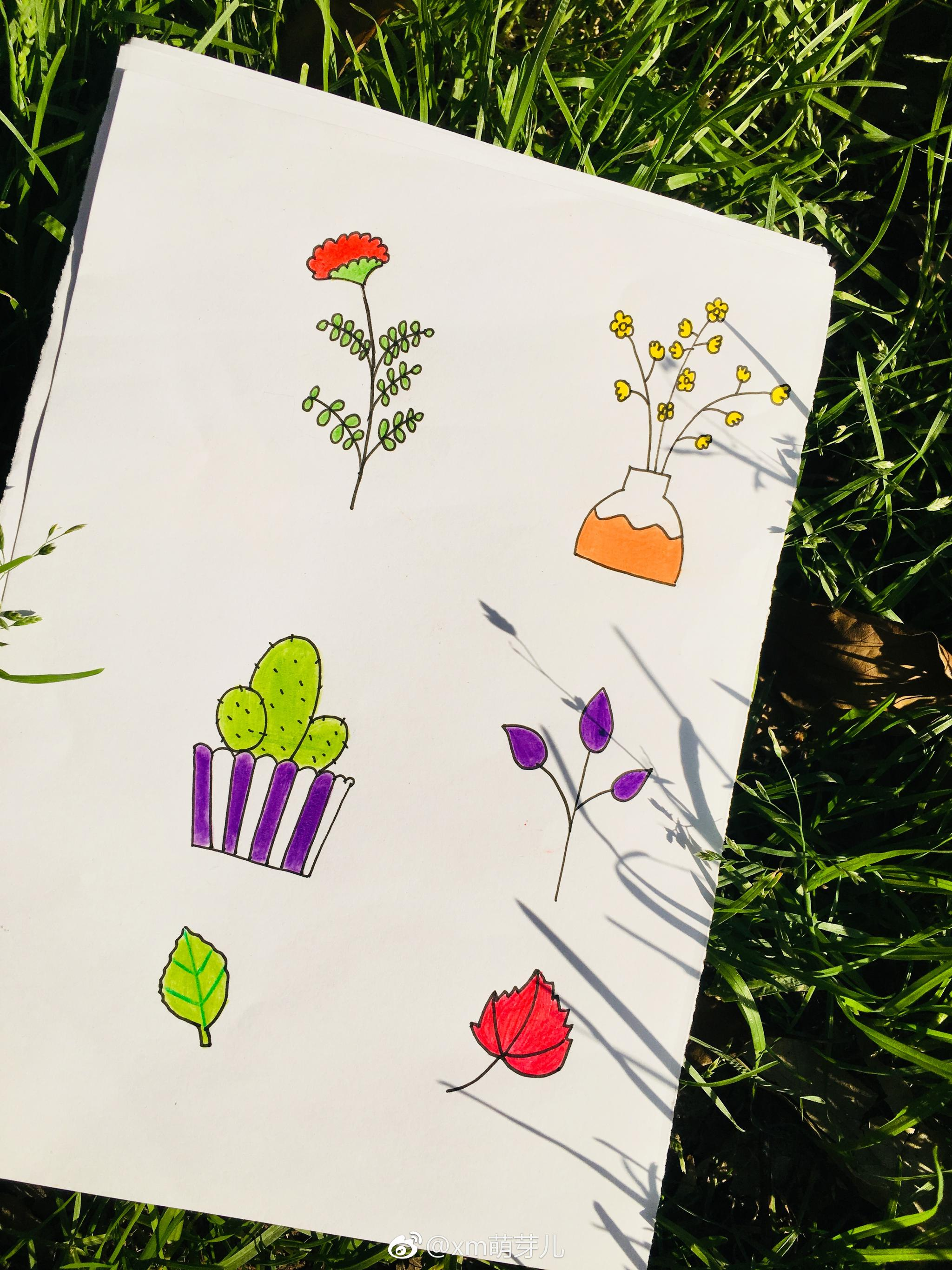 简笔画-彩铅,夏天来啦 作者