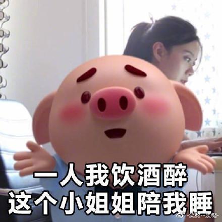 最近超级火的猪小屁表情包,好萌!图片